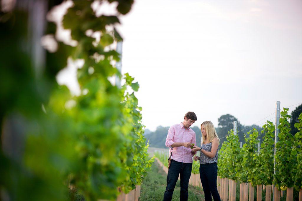 Flint Vineyard_Ben & Hannah Witchell in the vines