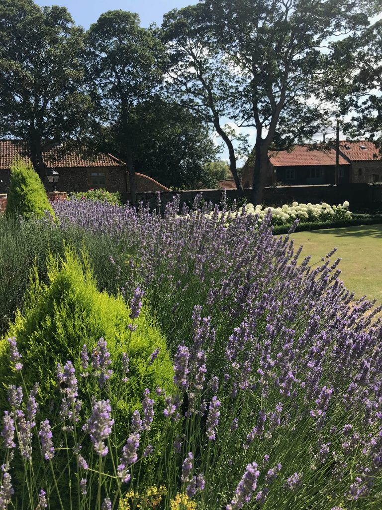 Lavender at Morston Hall, owned by Michelin-starred chef Galton Blackiston