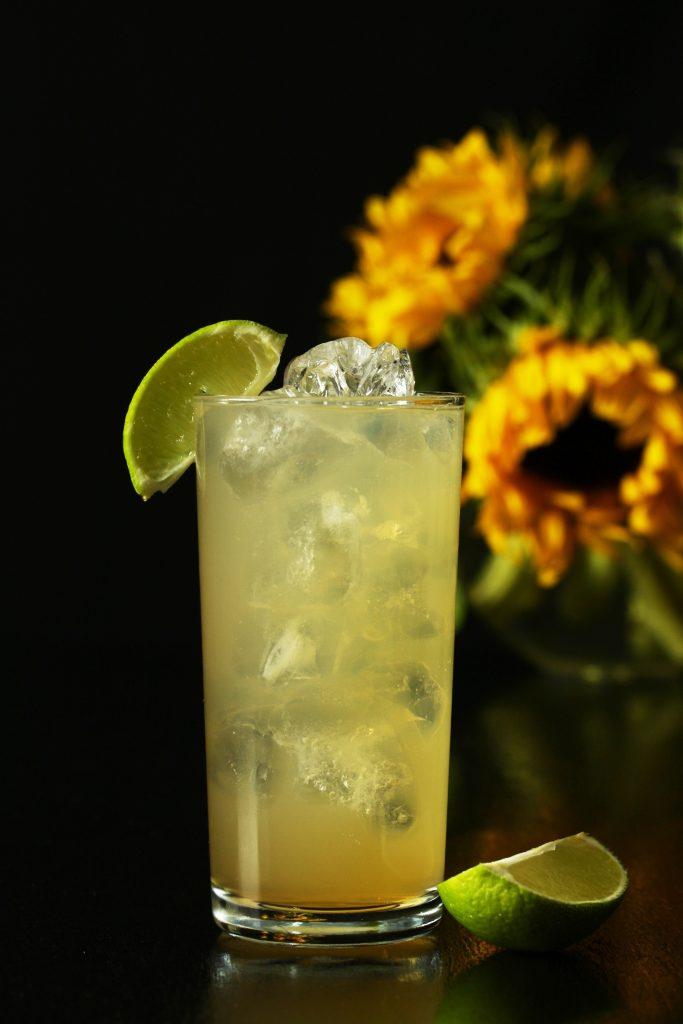 Norfolk Gin & Ginger Ale